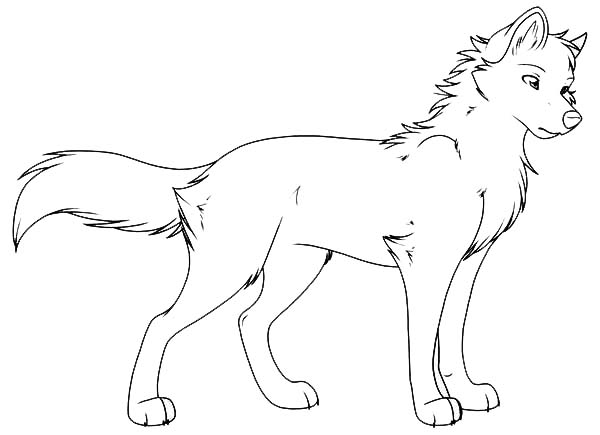 6 best images of winged wolf coloring pages printable for Coloring page of a wolf