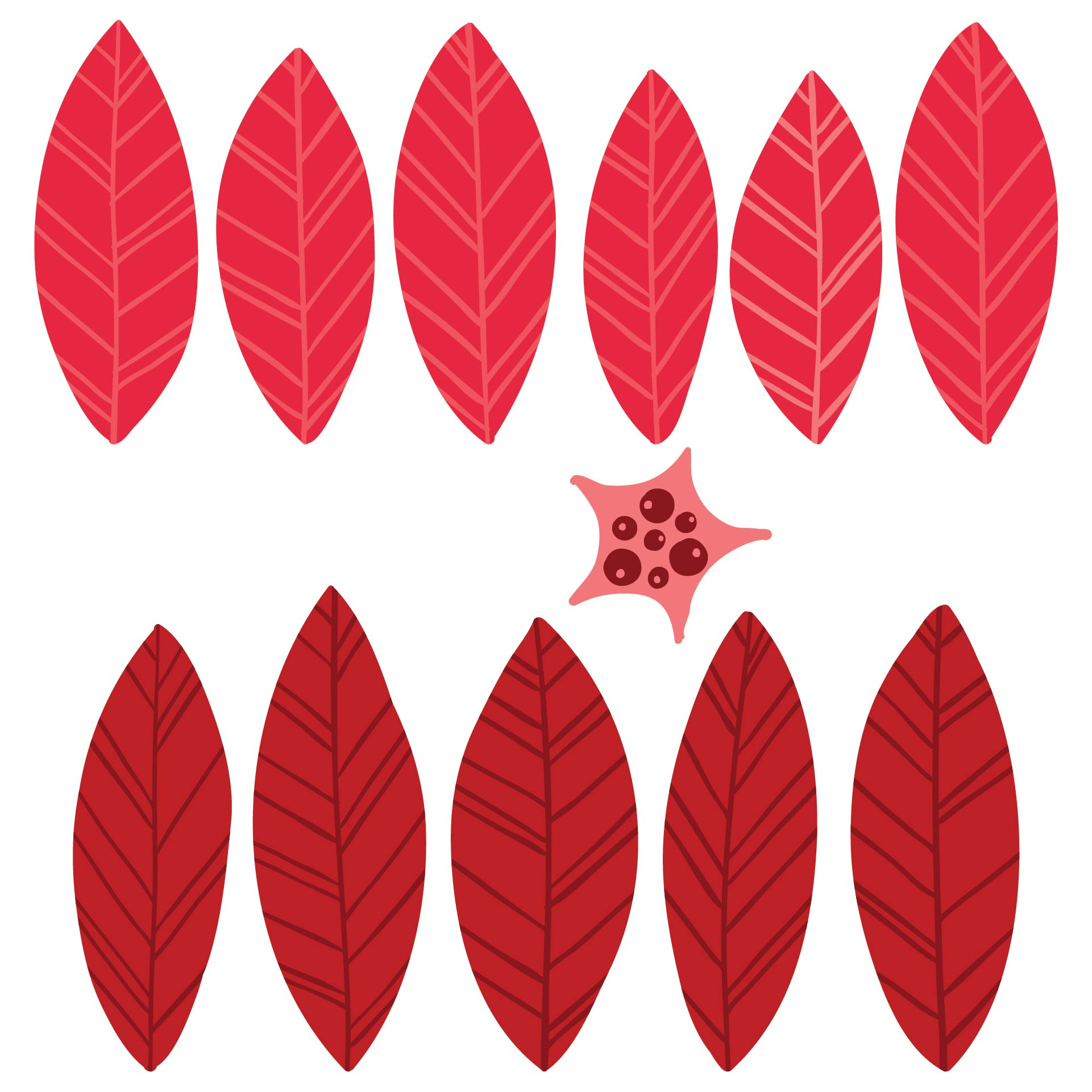 Best Images of Poinsettia Flower Template Printable - Paper Poinsettia ...