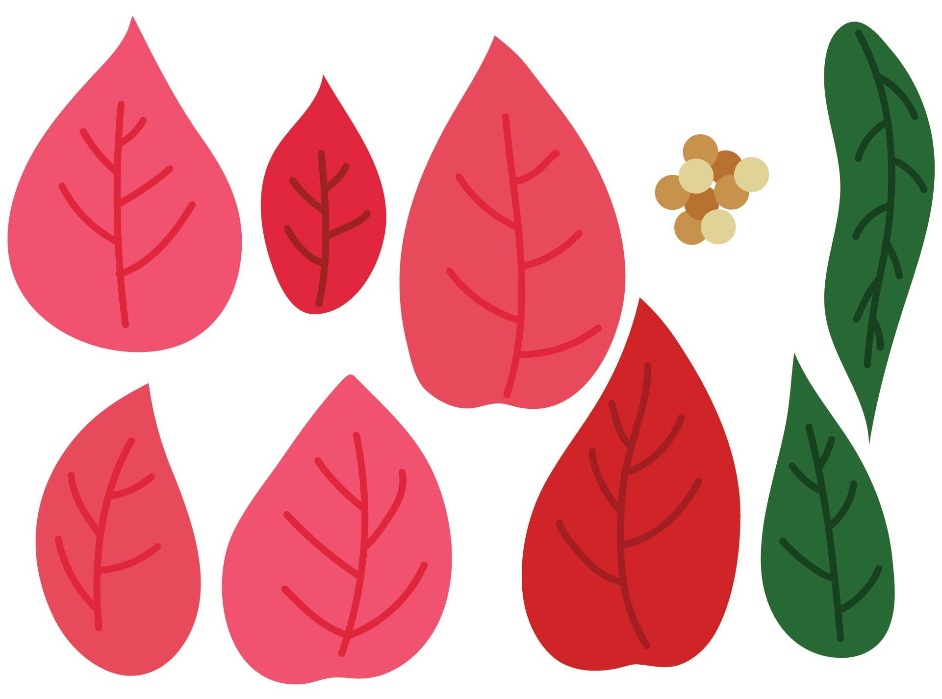 Poinsettia Leaf Pattern Template