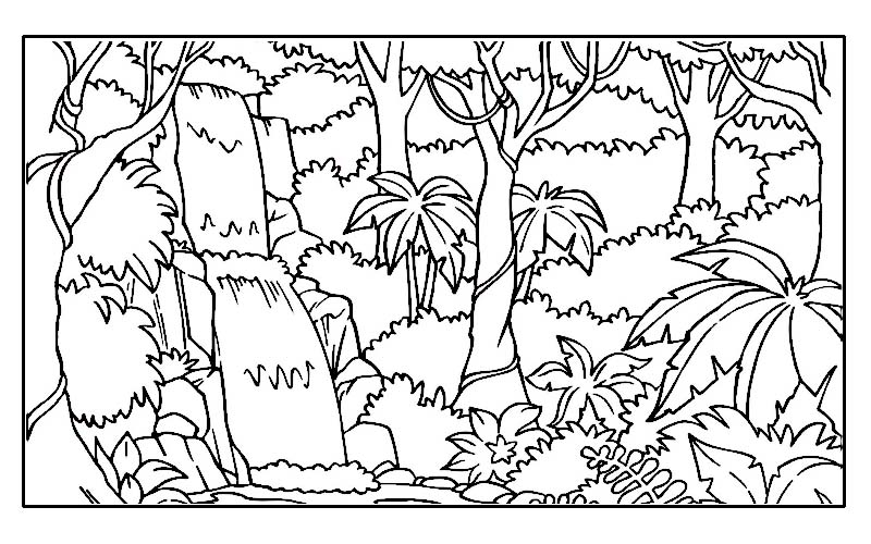 7 Images of Rainforest Coloring Pages Printable