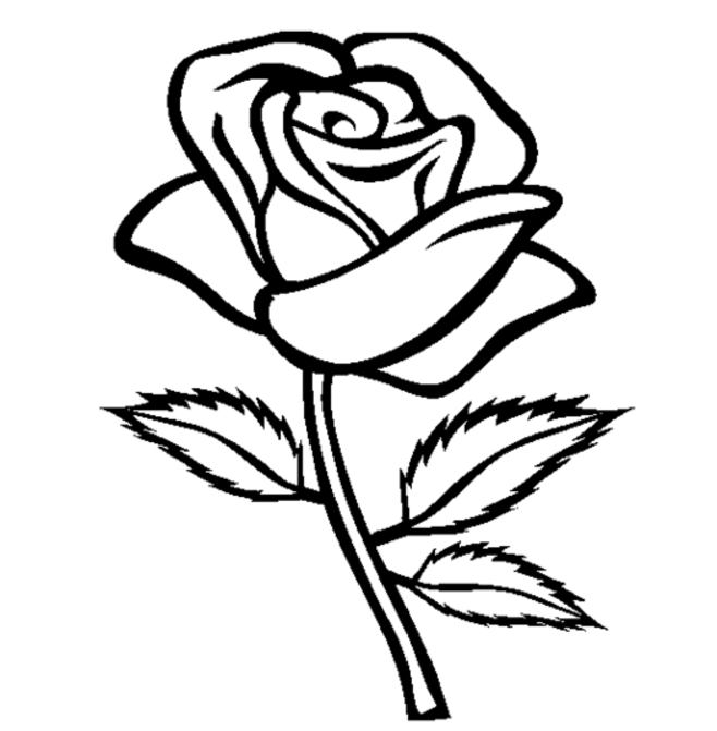 Printable Rose Coloring Pages For Kids | 671x658