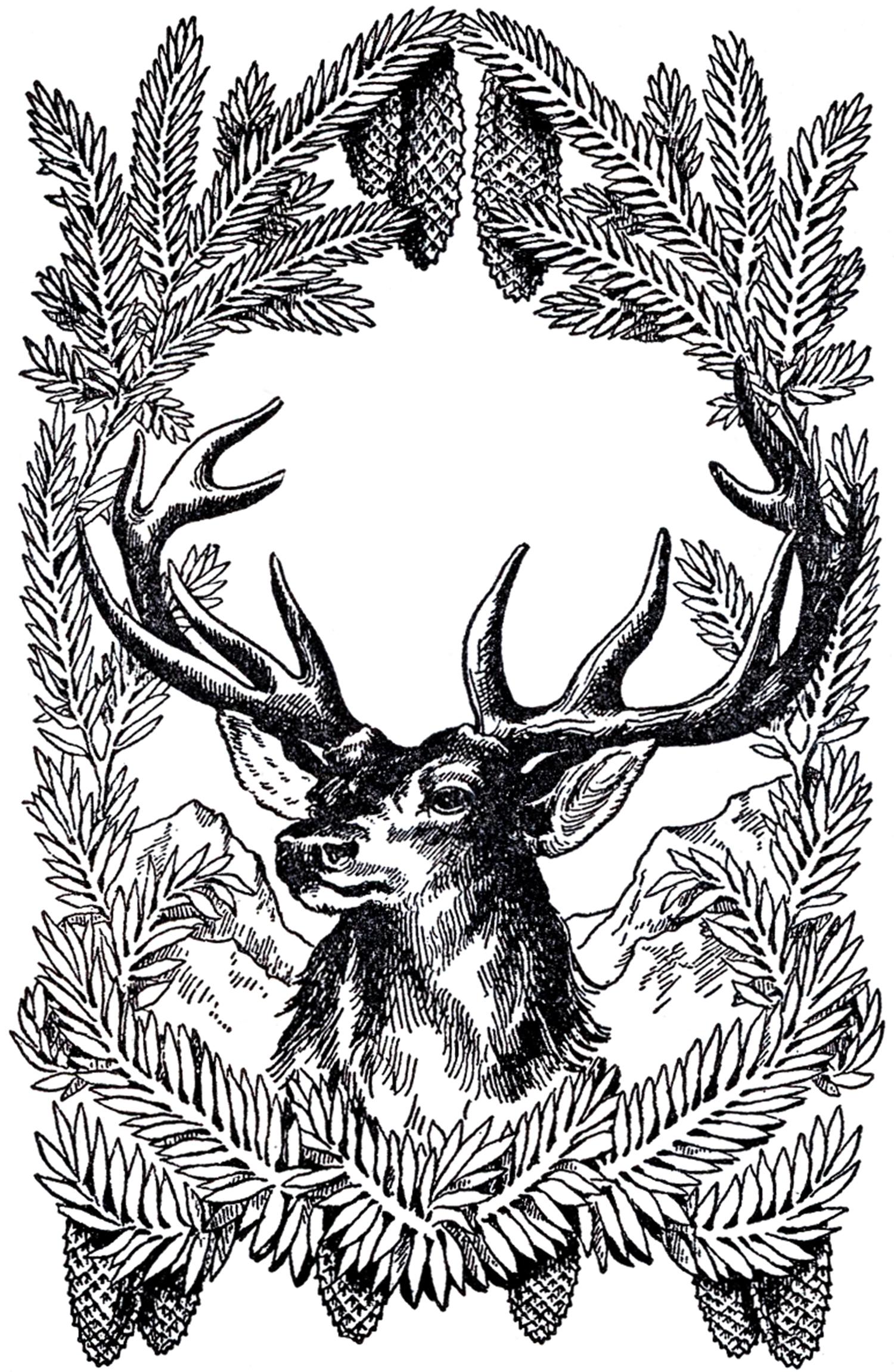 Christmas Deer Pattern Free