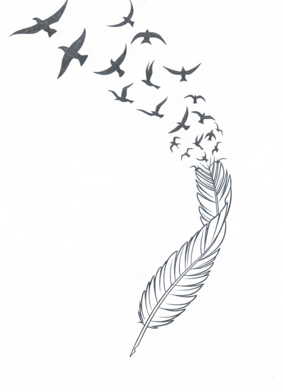 7 Images of Feathers Into Bird Printable