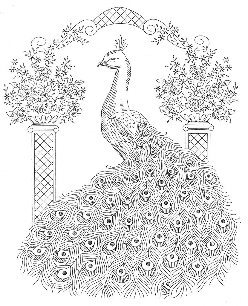 6 Images of Peacock Printable Half Page