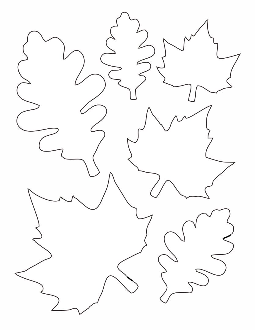 6 Images of Paper Printable Leaf Patterns