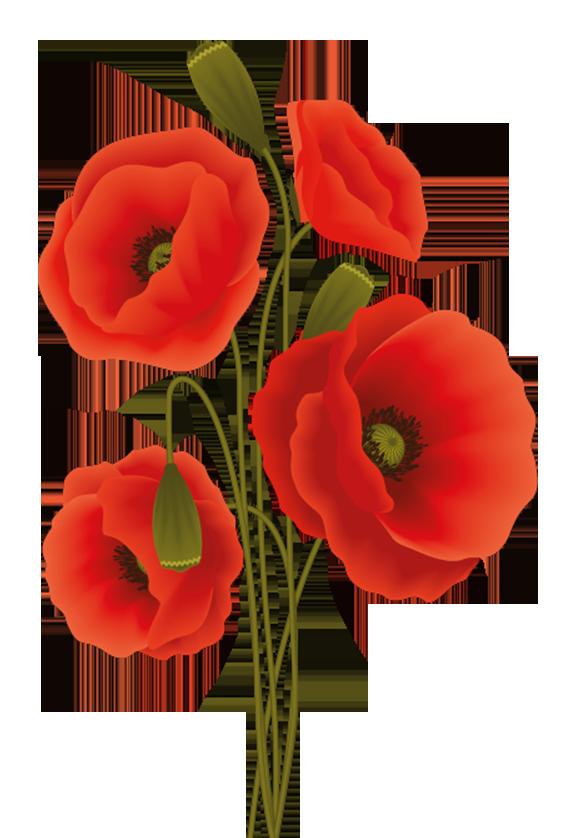 Poppy flower design printable - poppyflower pattern in red color