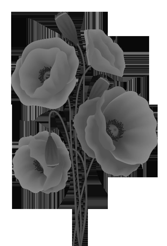 Poppy flower stencil design - poppyflower pattern in grey