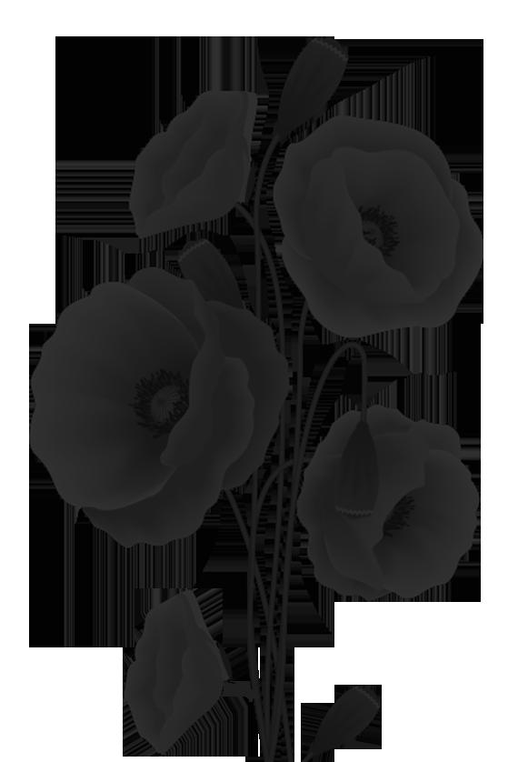 Transparent poppy flower stencil design - poppyflower pattern in black and white