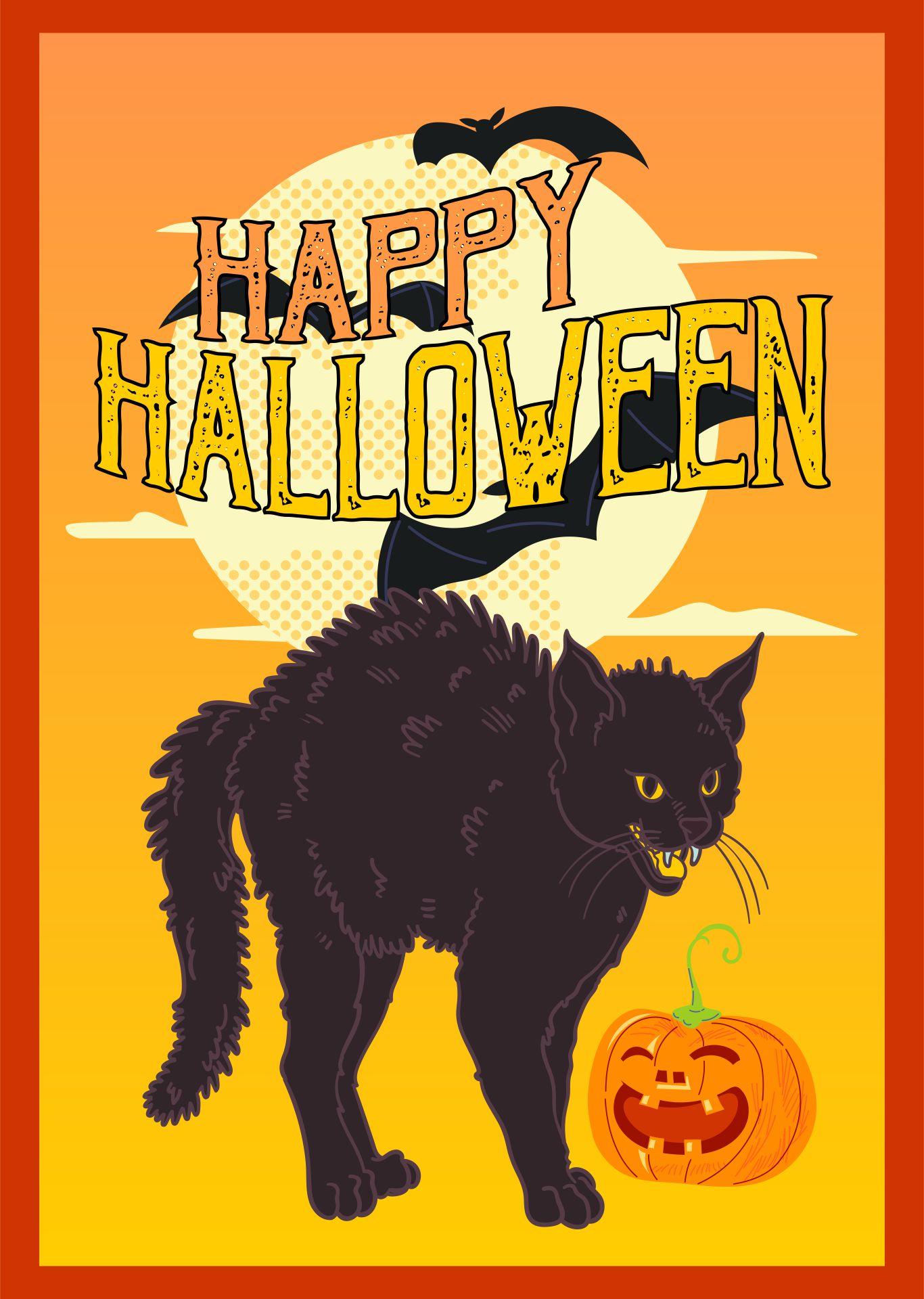 Vintage Halloween Postcard Cat