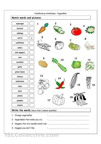 self build garden room guide pdf