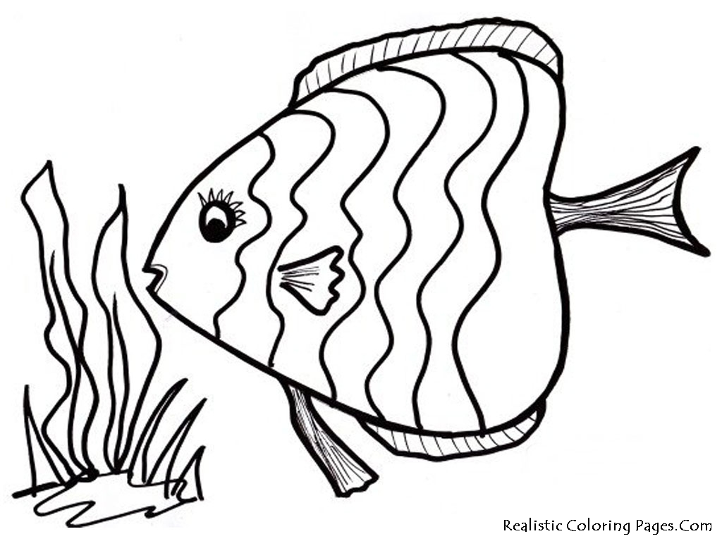5 Images of Printable Fish Coloring Pages