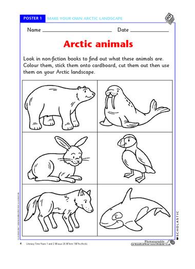 arctic animal activities for preschool 7 best images of free preschool printables arctic arctic 790