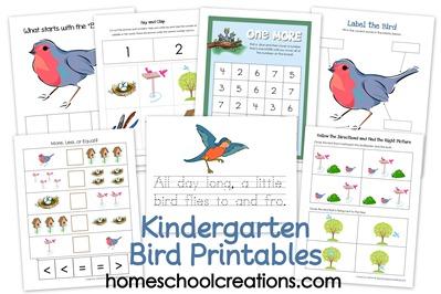 8 Images of Printable Preschool Theme Birds
