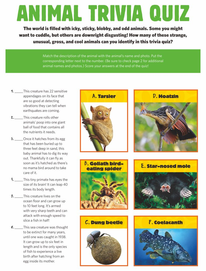 Printable Animal Trivia Questions and Answers