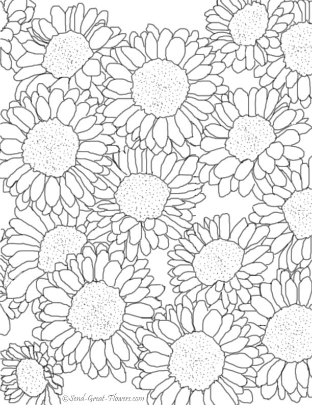 7 Images of Fall Flowers Coloring Pages Printable