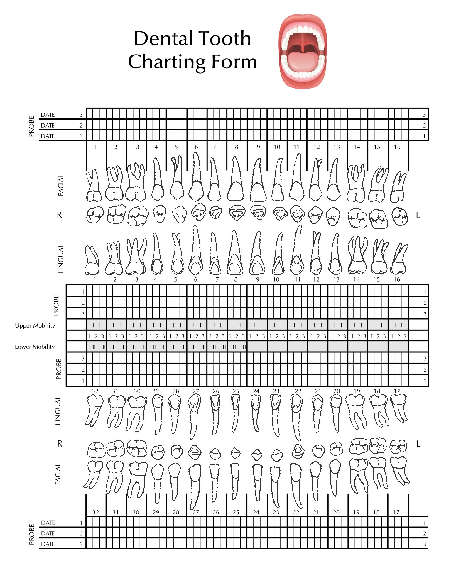 Dental Tooth Charting Form
