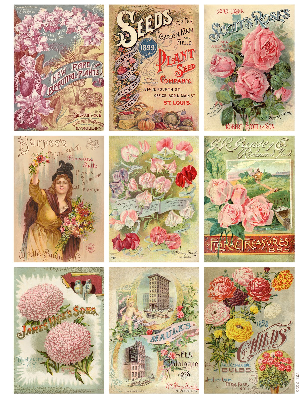 6 Images of Vintage Seed Packets Printable