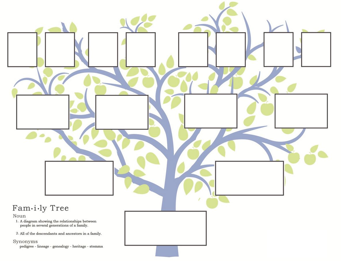 Family Tree Design Ideas 1000 ideas about family trees on pinterest genealogy ancestry and free genealogy Printable Family Tree Template