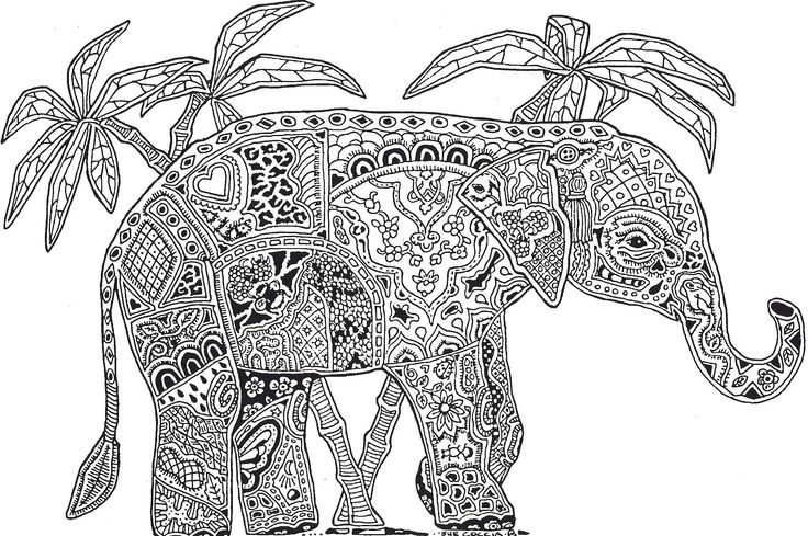 5 Images of Printable Adult Coloring Page Elephant