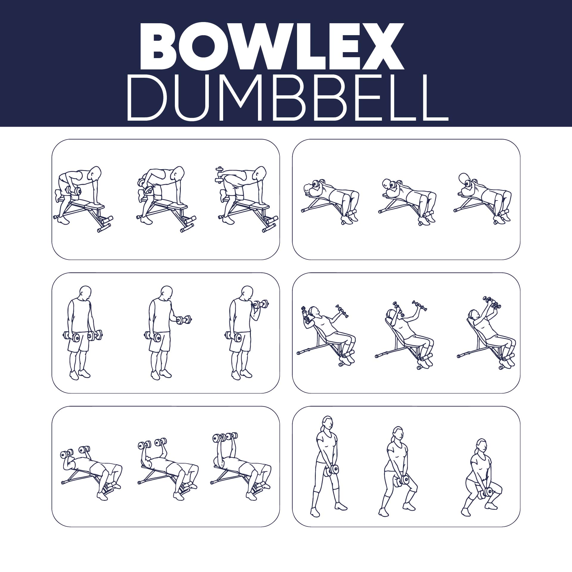 Bowflex Dumbbell Workout Chart