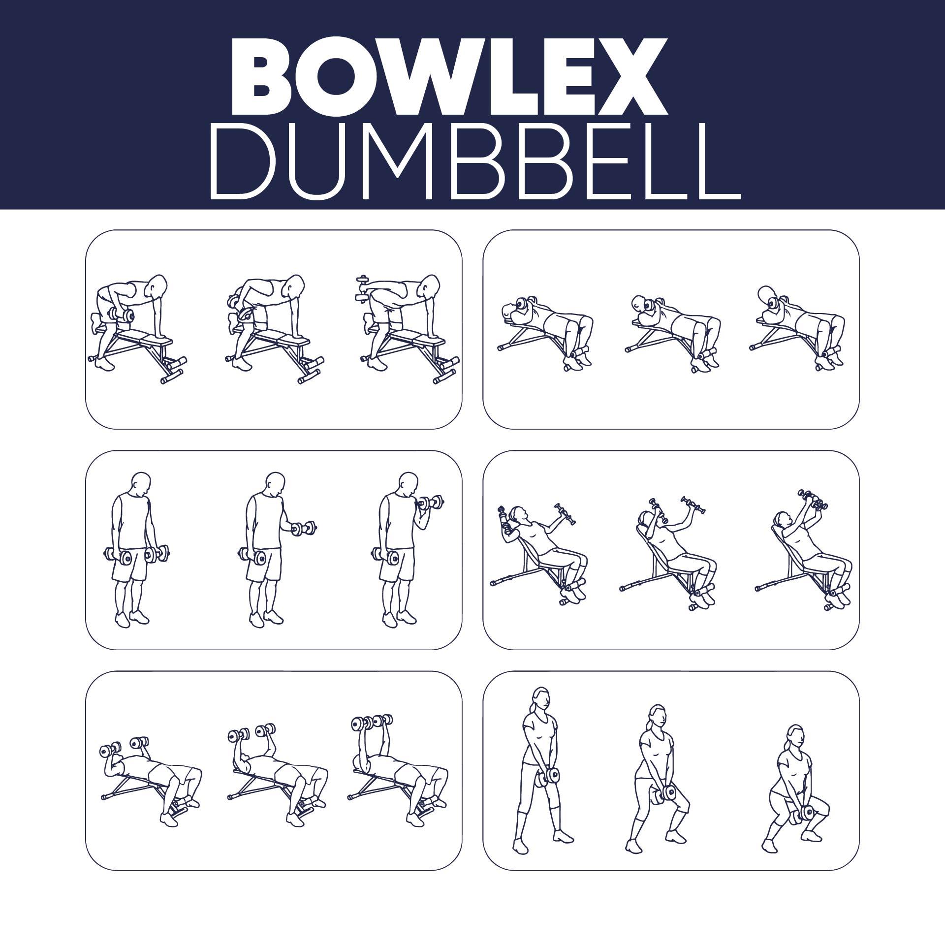 Bowflex Dumbbell Workout Chart