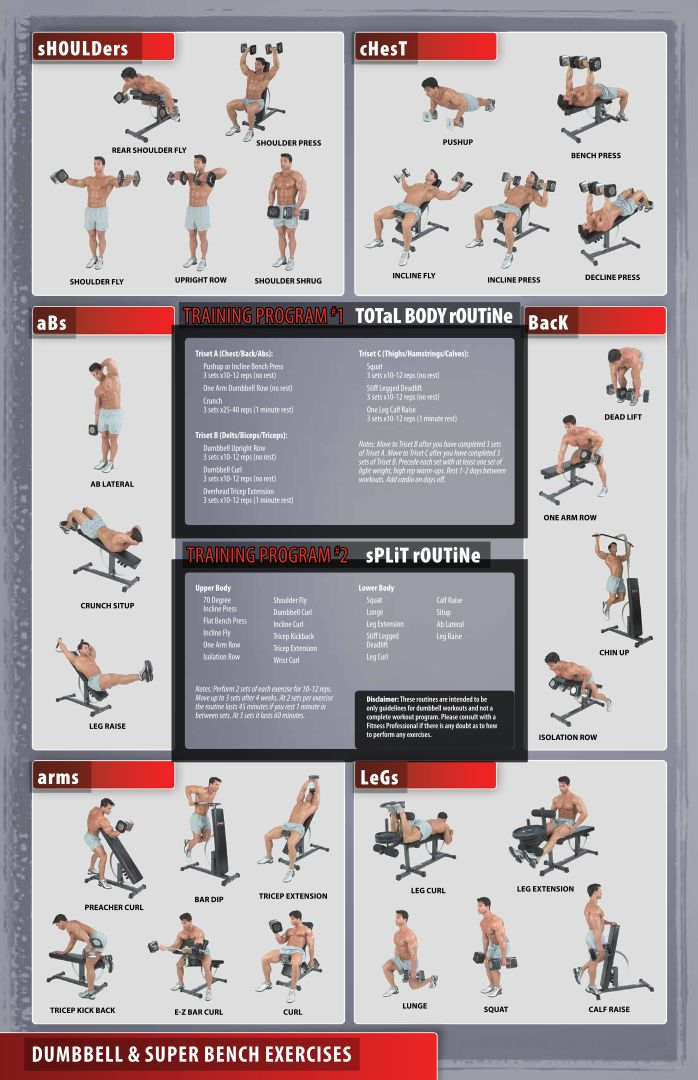 of Dumbbell Exercises Chart Printable PDF - Dumbbell Exercise Chart ...