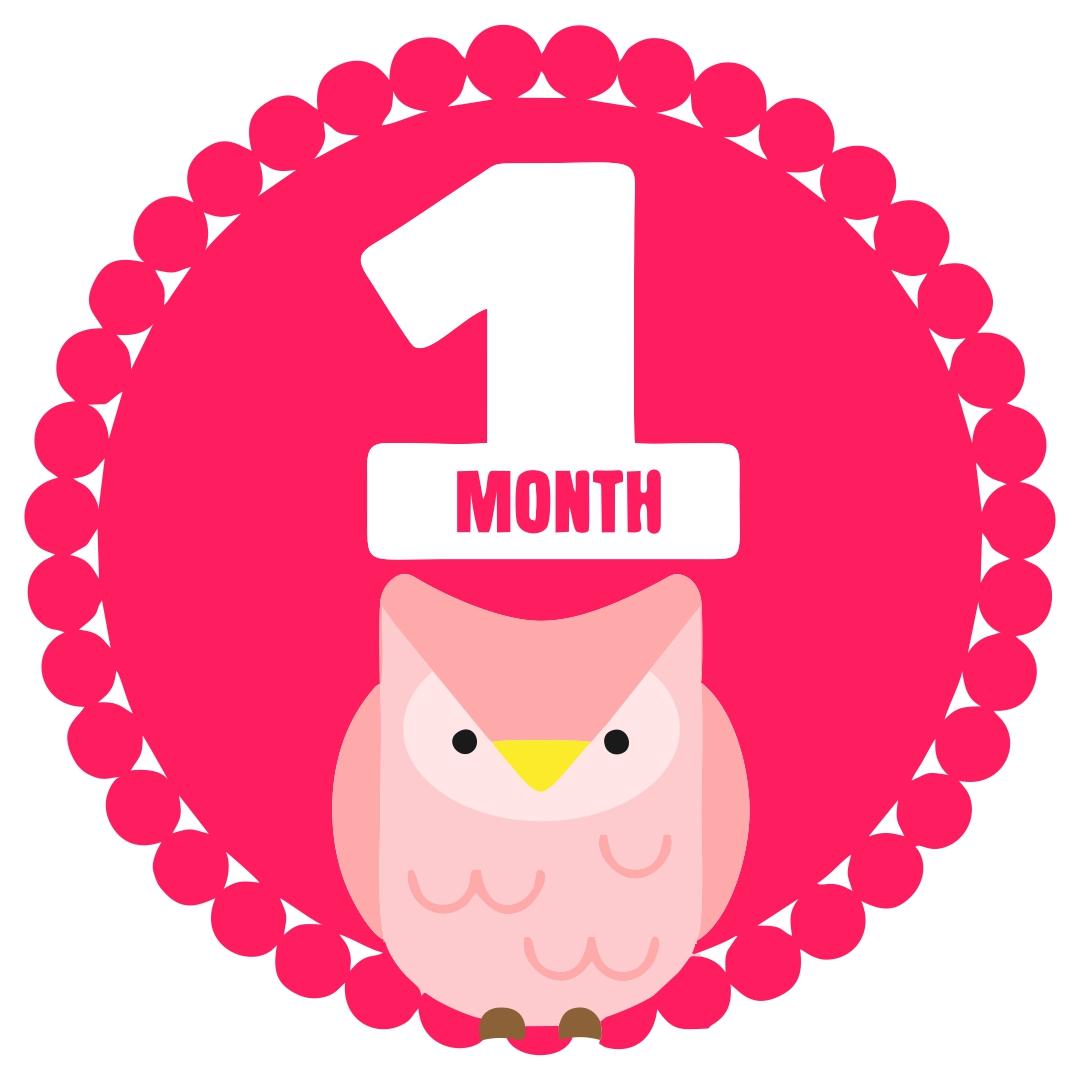 9 Best Free Printable Baby Monthly Signs Printablee Com