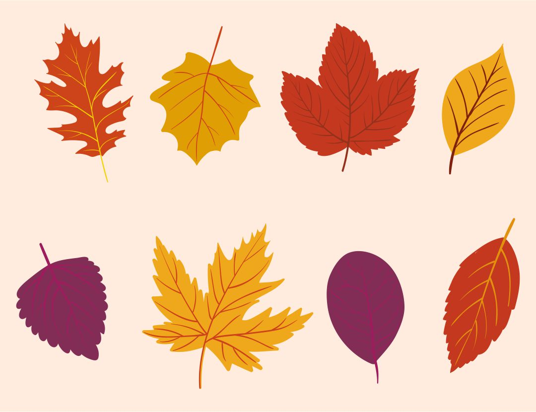 6 Images of Printable Autumn Leaves Decor