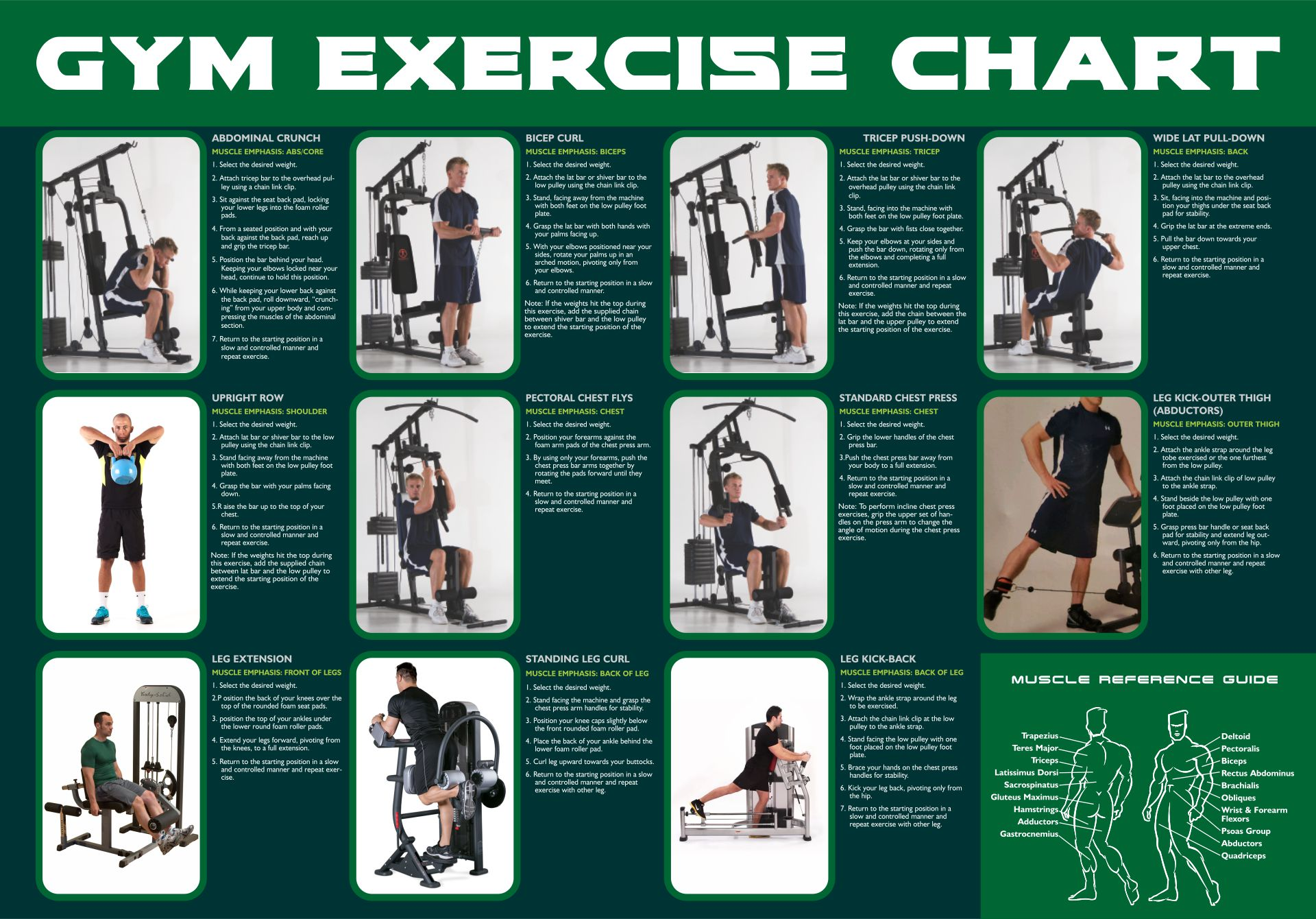 9 Best Images of Printable Chair Exercises For Seniors ...