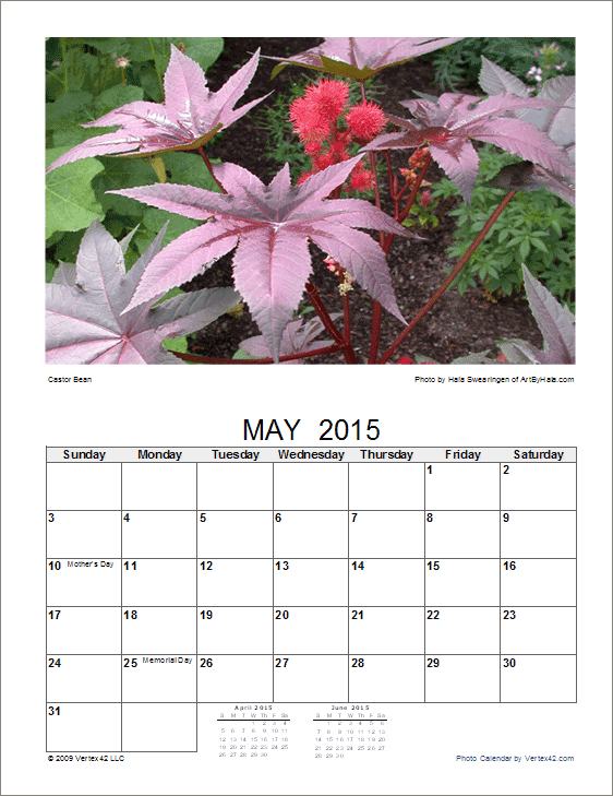 9 Images of Free Printable Flower Calendars 2016
