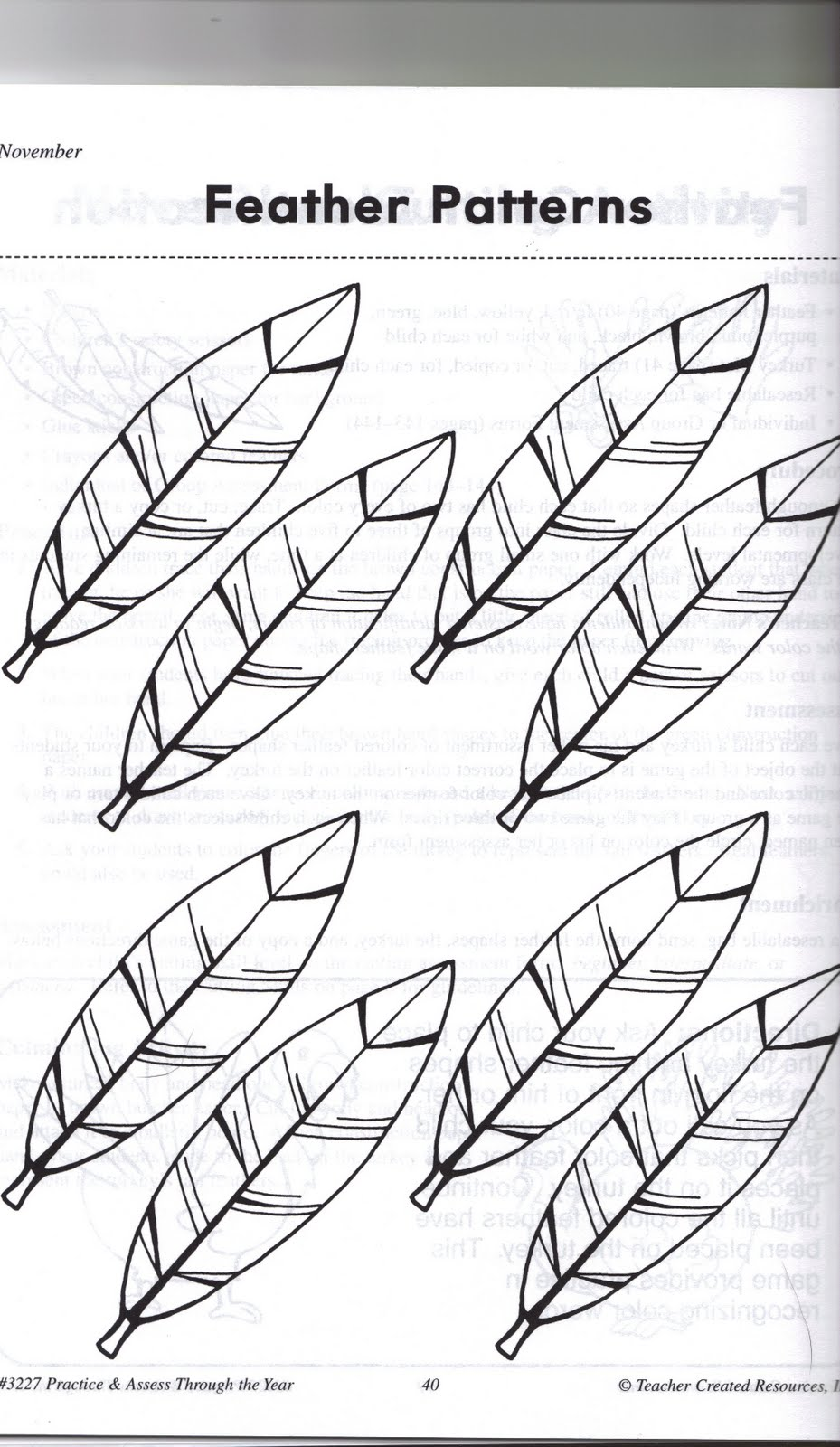 5 best images of turkey feather worksheet printable turkey feather template printable turkey. Black Bedroom Furniture Sets. Home Design Ideas