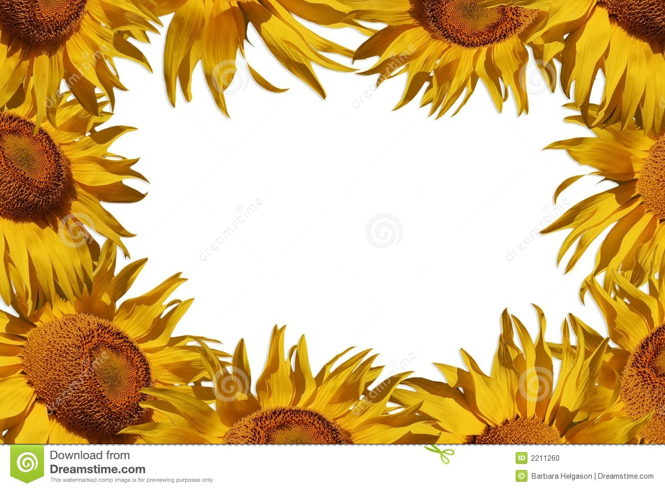 clip art borders sunflowers - photo #35