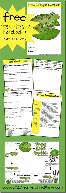5 Images of Free Printable Household Notebook