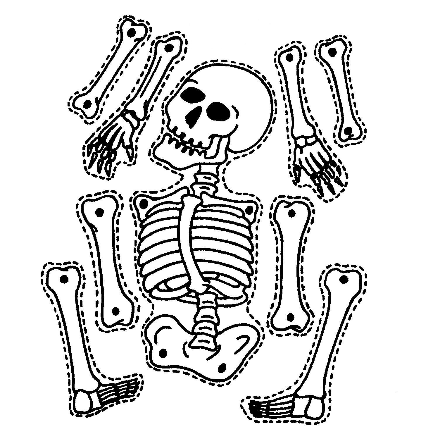 5 Images of Skeleton Outline Printable