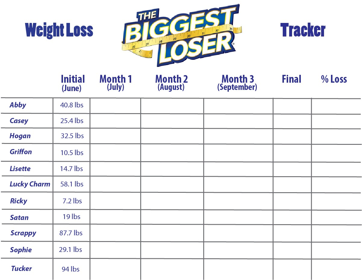 5 best images of biggest loser weight chart printable for Weight loss challenge flyer template