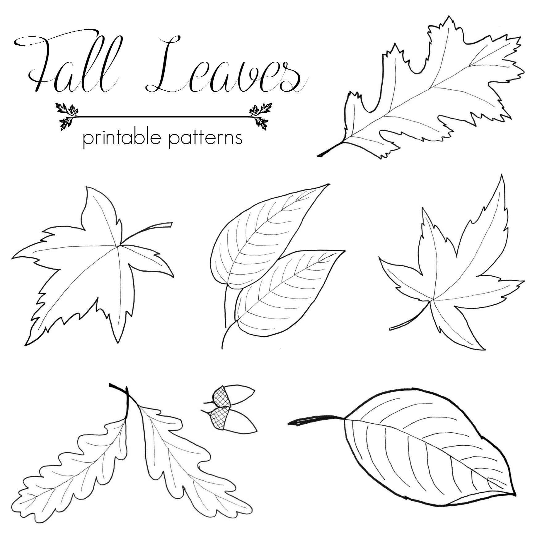 7 Images of Free Printable Fall Patterns