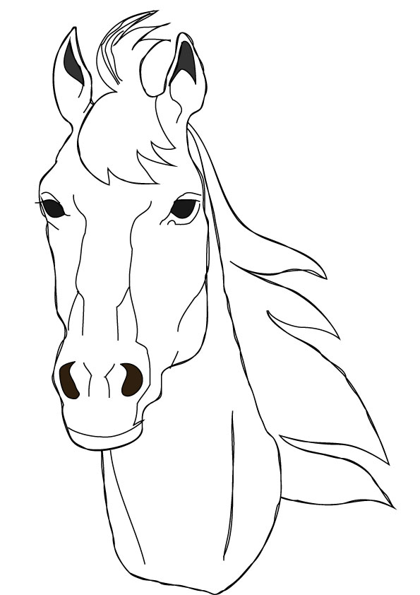 horse head coloring pages to print - 5 best images of printable horse head horse head