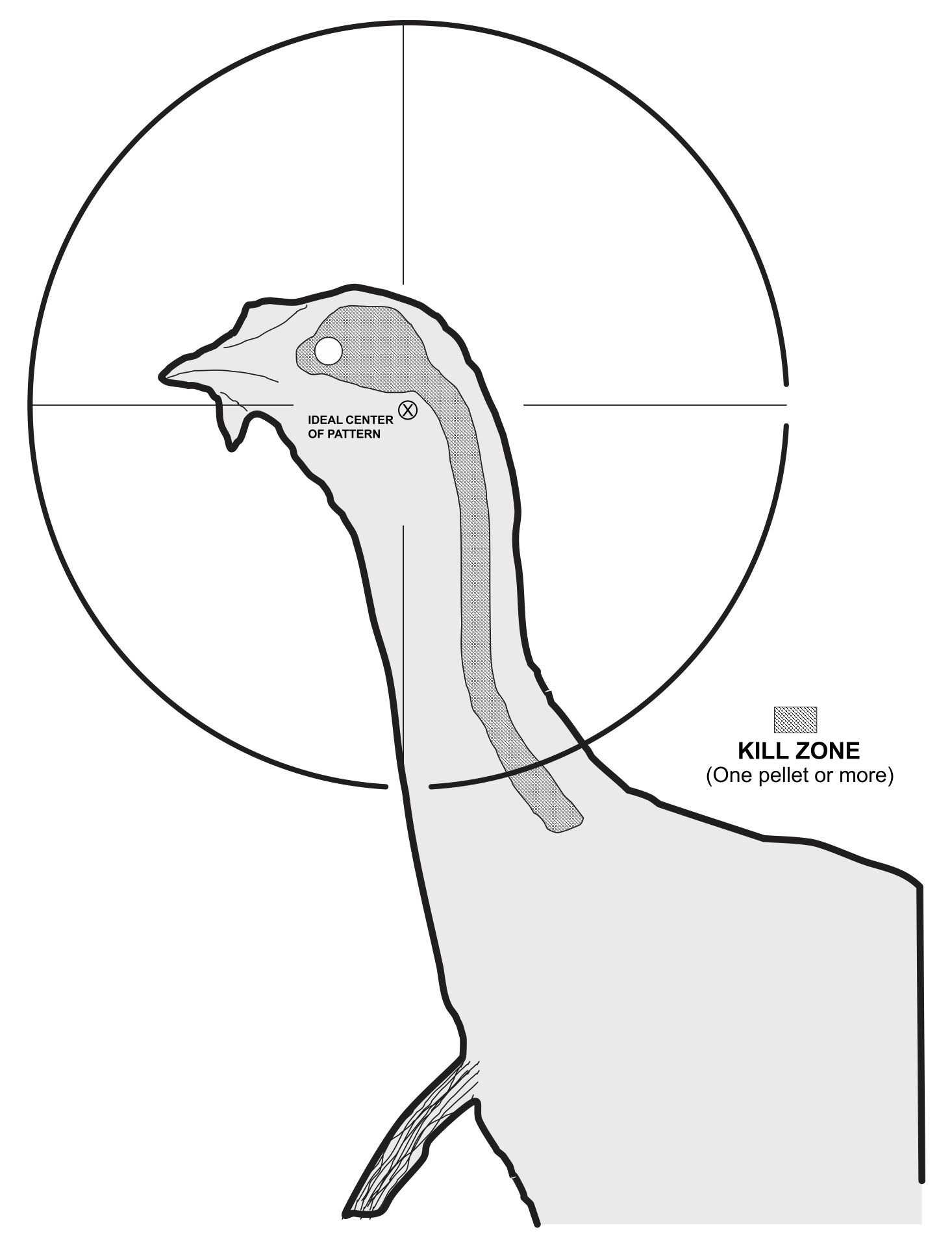 Printable Turkey Targets for Shooting