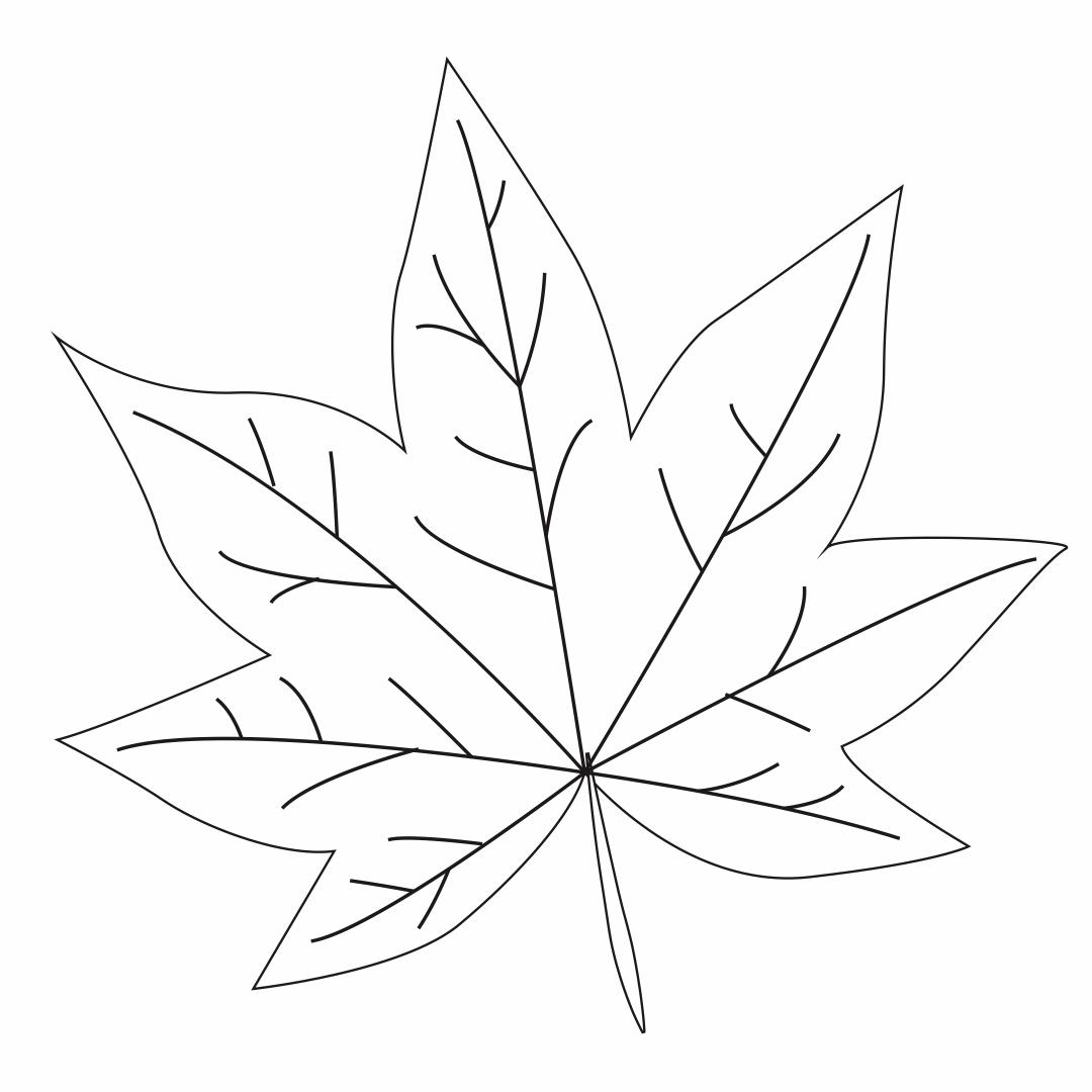 5 best images of printable leaf pattern template leaves templates printable fall leaf. Black Bedroom Furniture Sets. Home Design Ideas