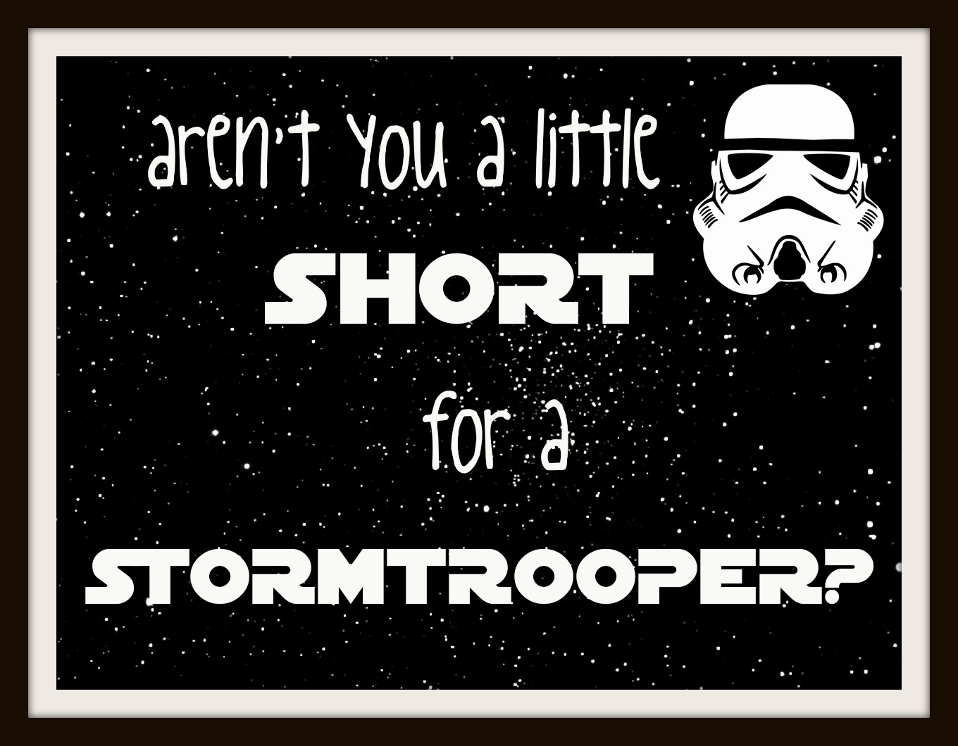 Star Wars Stormtrooper Quotes