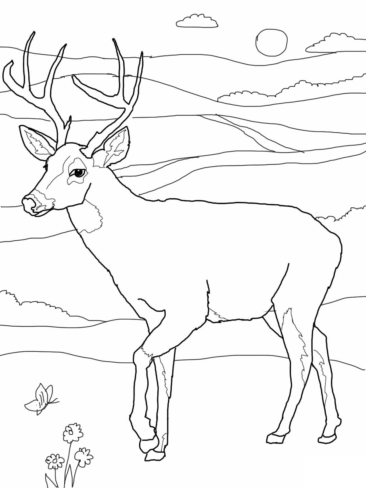 7 Images of Deer Coloring Pages Printable