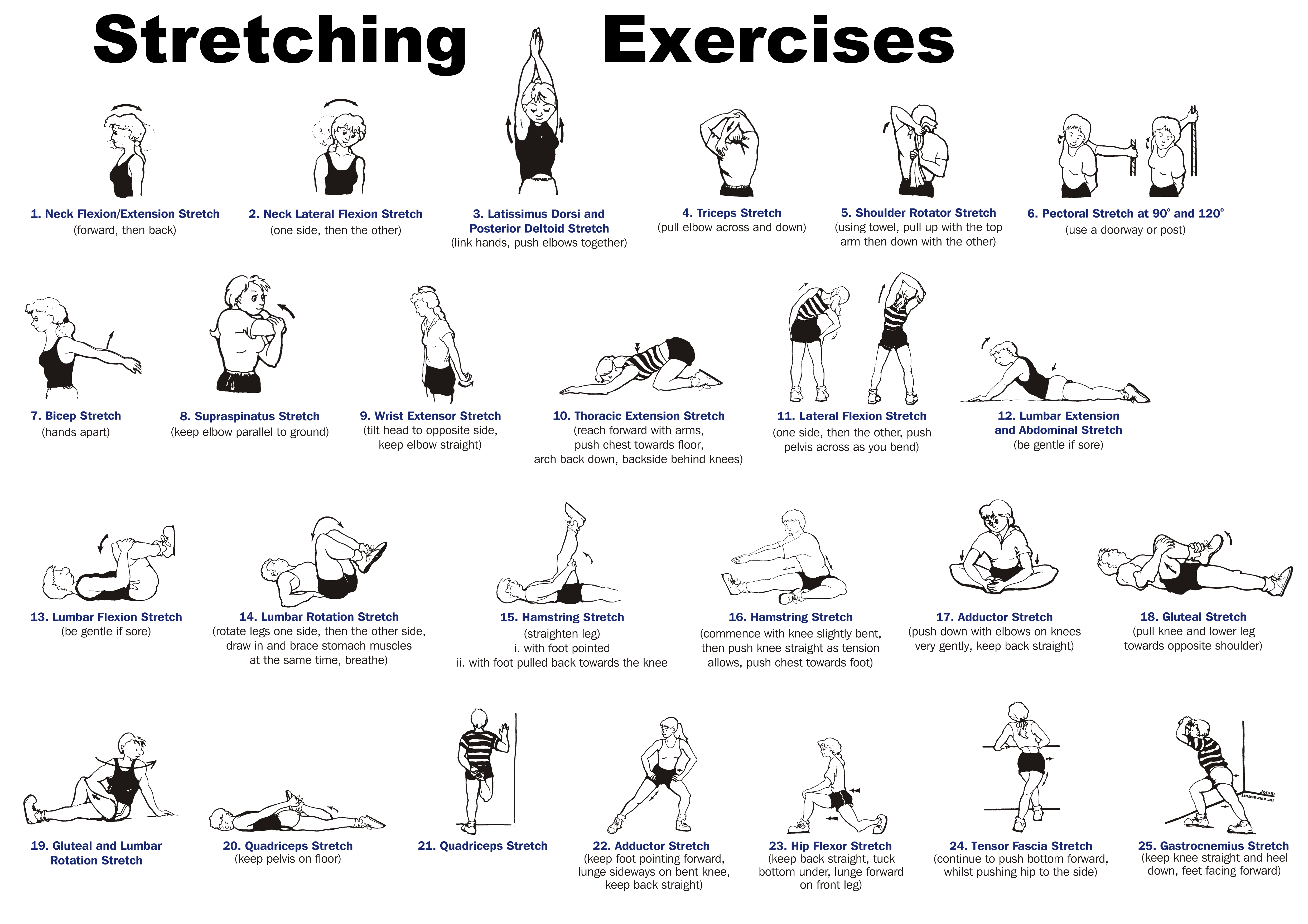 Whole Body Stretching Exercises