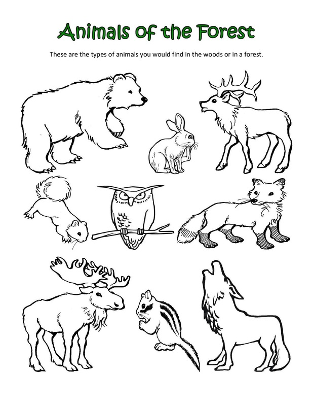 Animal Habitat Colouring Pages Animal Habitat Coloring