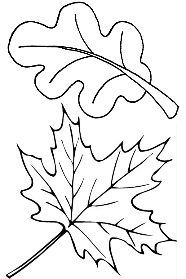 6 Images of Fall Leaf Coloring Page Printables