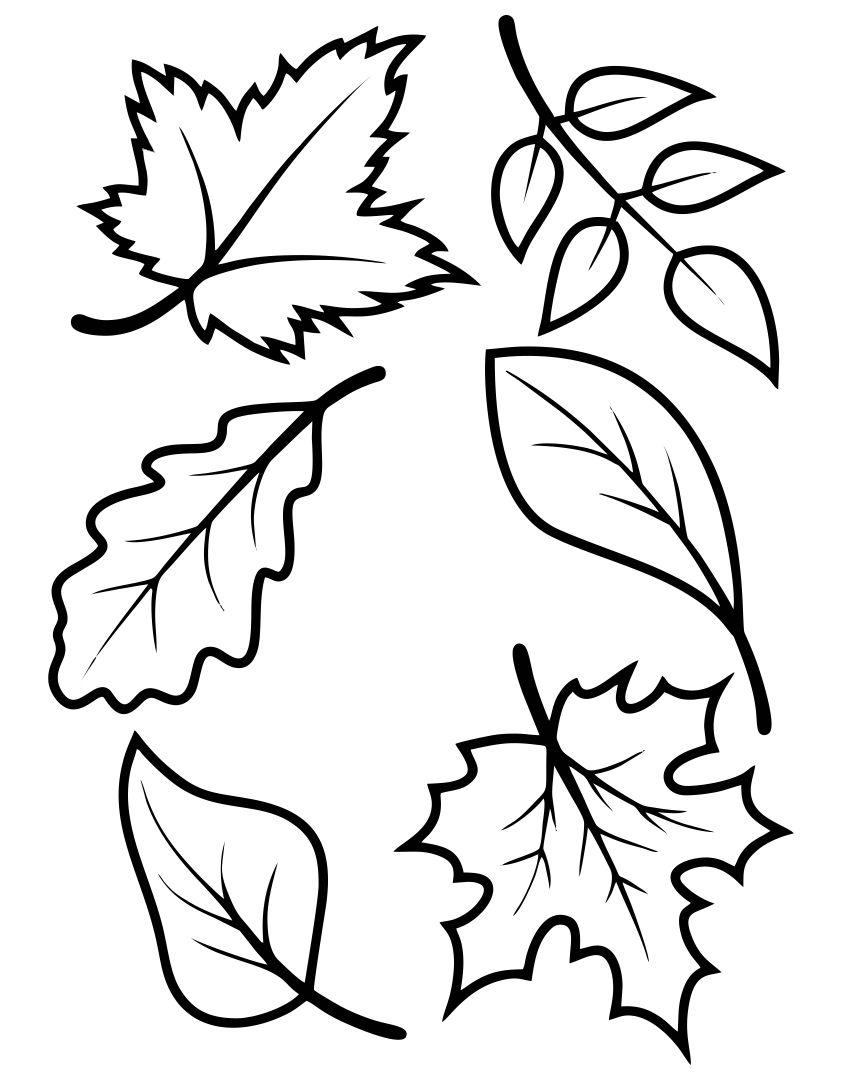 7 Best Fall Leaves Printable Templates - printablee.com