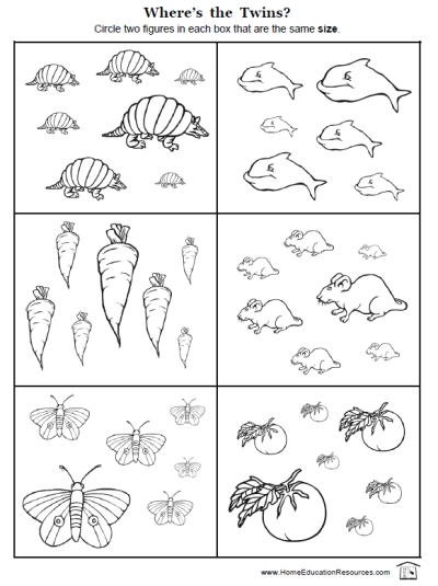 Kindergarten Homework Worksheets & printables free homework ...