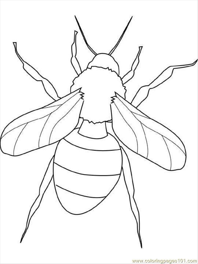 4 Images of Printable Insect Coloring Pages