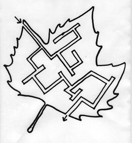 Leaf Maze Printable