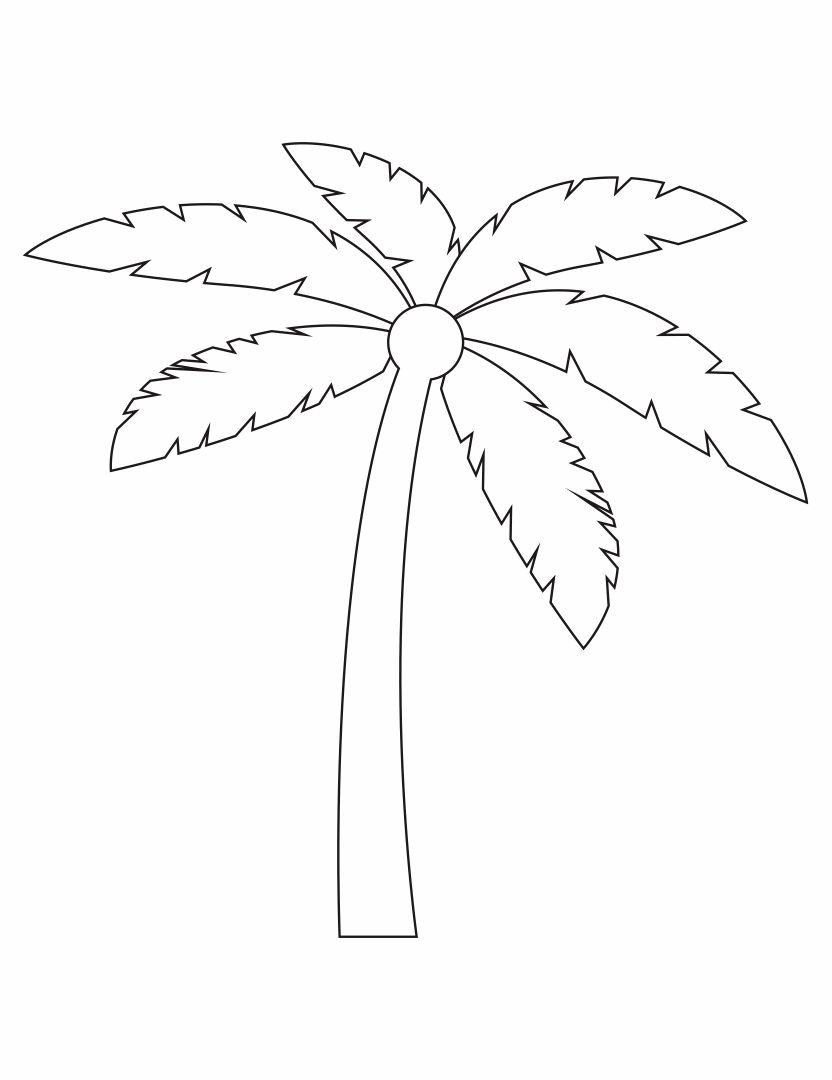 Palm Tree Stencils Printable