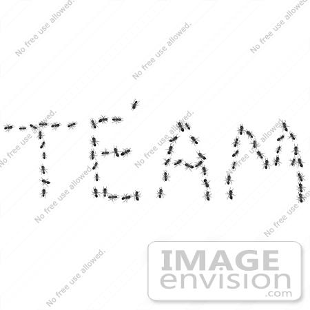 Teamwork Clip Art Word